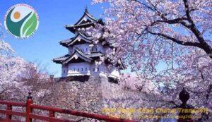 Dịch tiếng Nhật và đất nước Nhật Bản